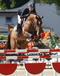 vincenzo_v._numero_uno_winner_of_the_linz_2008_young_horses_finals_5