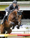 vincenzo_v.numero_uno_x_ekstein_with_denis_huser_at_the_young_horses_championships_2007_in_ermelo